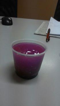 Slime ungu kayak puding buah naga ya?