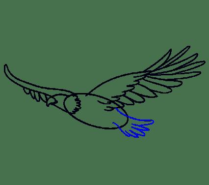 Cara Menggambar Garuda: Langkah 11