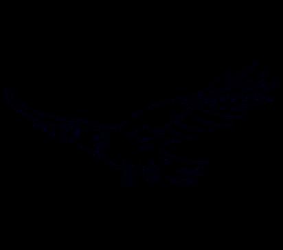 Menggambar Garuda