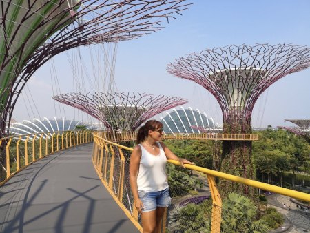 Skyway Gardens by the Bay