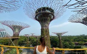 Visitar los Gardens by the Bay