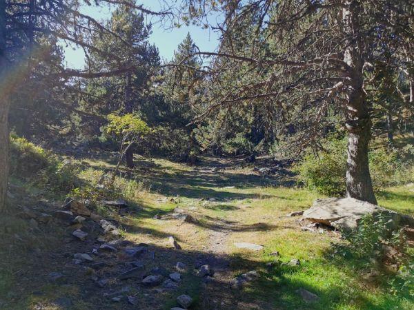 Excursión al santuario de Montgarri
