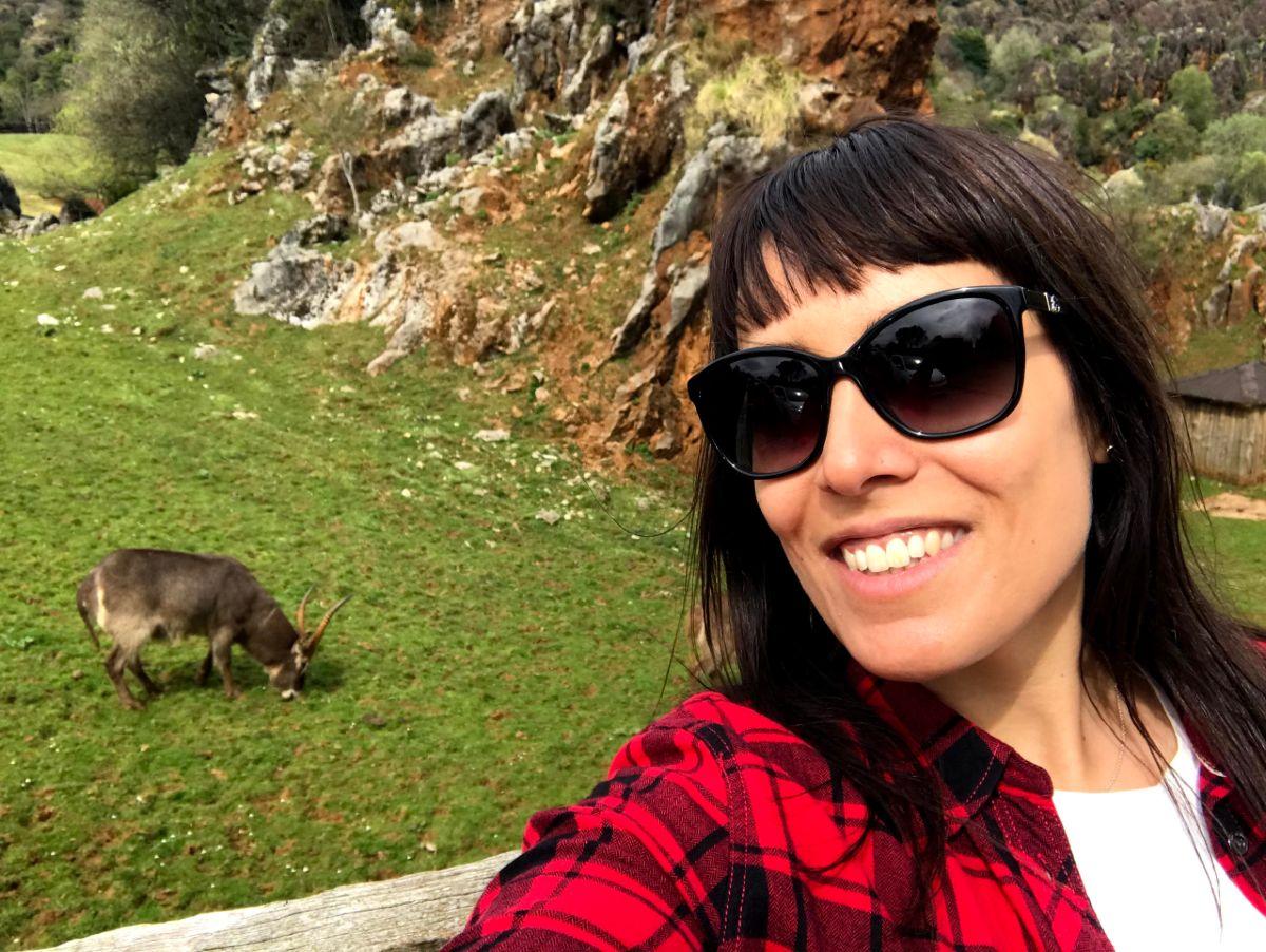 Como visitar el Parque de la Naturaleza de Cabárceno