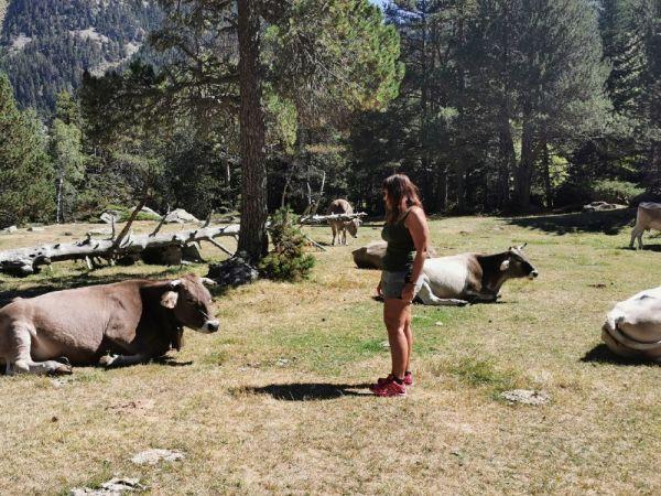 Guía que ver y que hacer en el Valle de Arán
