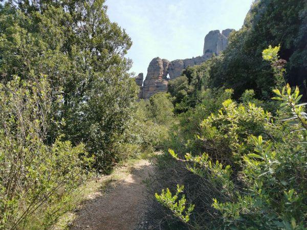 Ruta hacia La Foradada de Montserrat