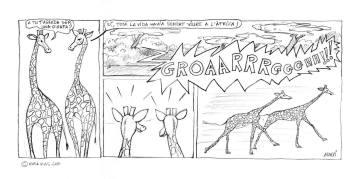 Girafes espantades / Scared Giraffes