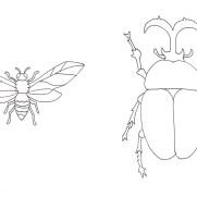 カブトムシとハチの塗り絵