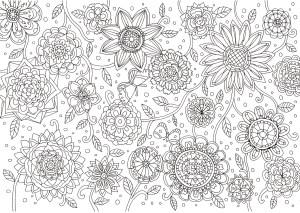 たくさんの花の塗り絵