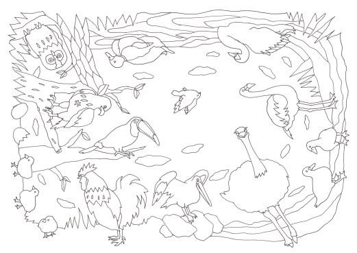 360全方向から塗れる12種類の鳥の塗り絵です ぬりえラボ
