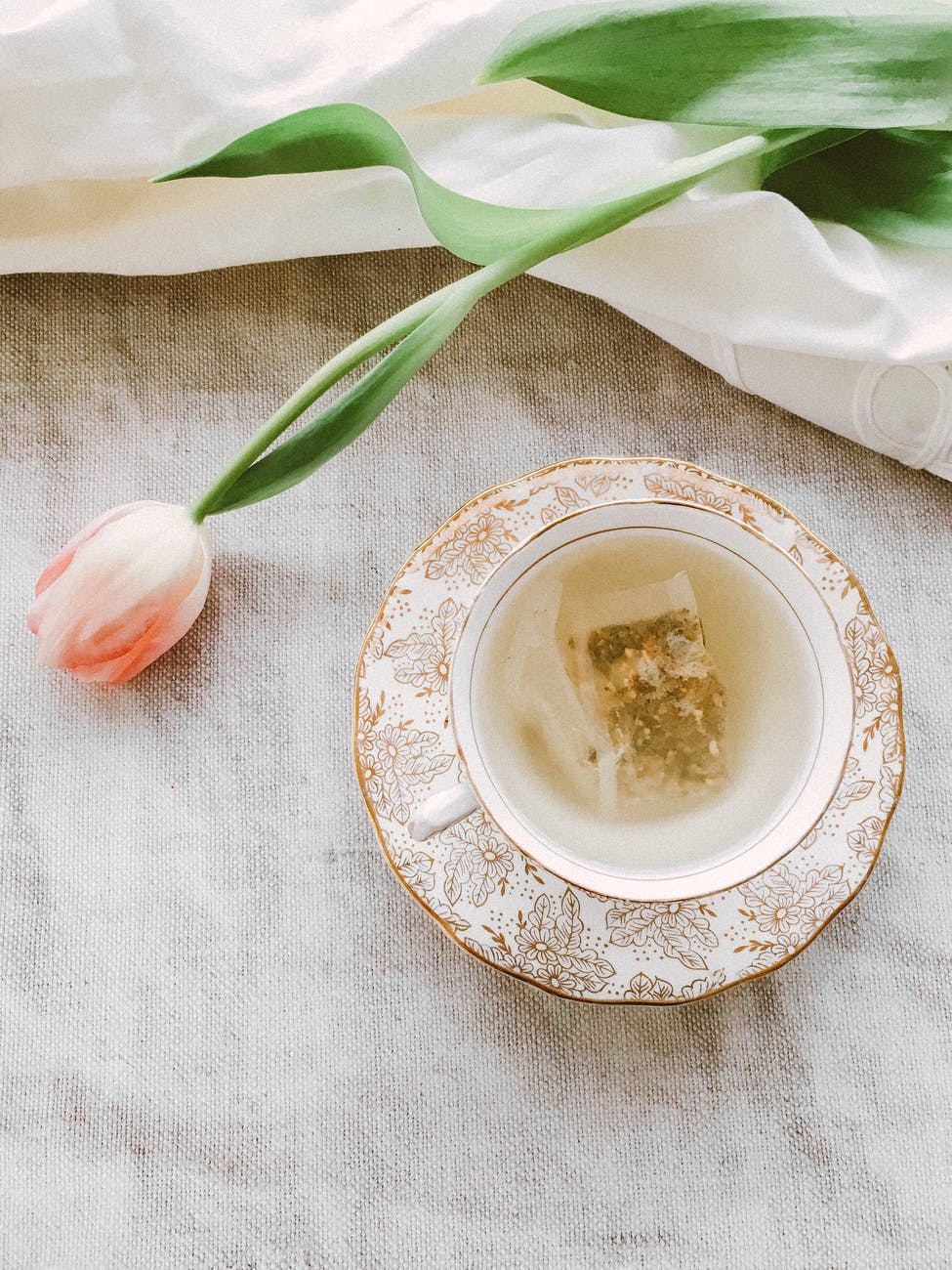 pink petaled flowers near teacup and saucer
