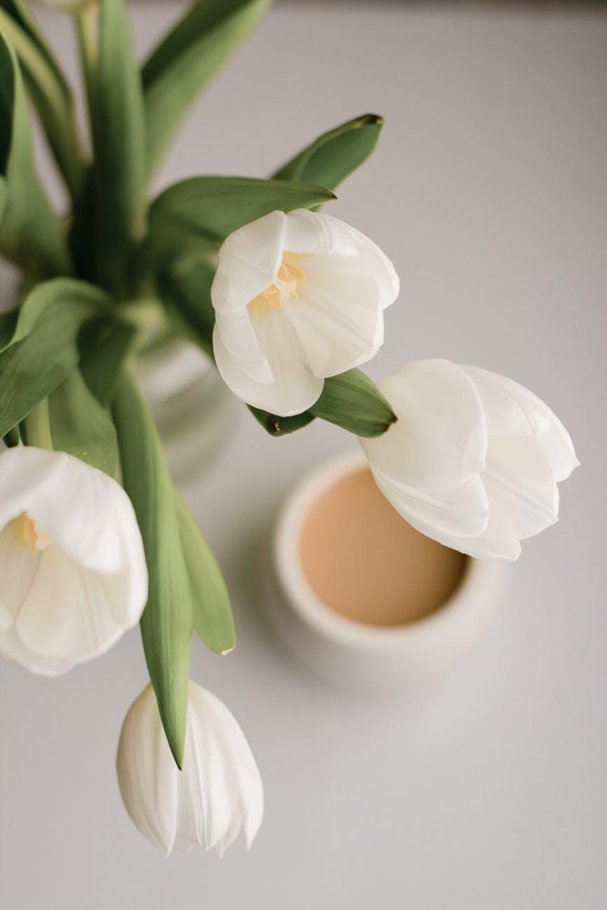 bouquet of tulips near coffee