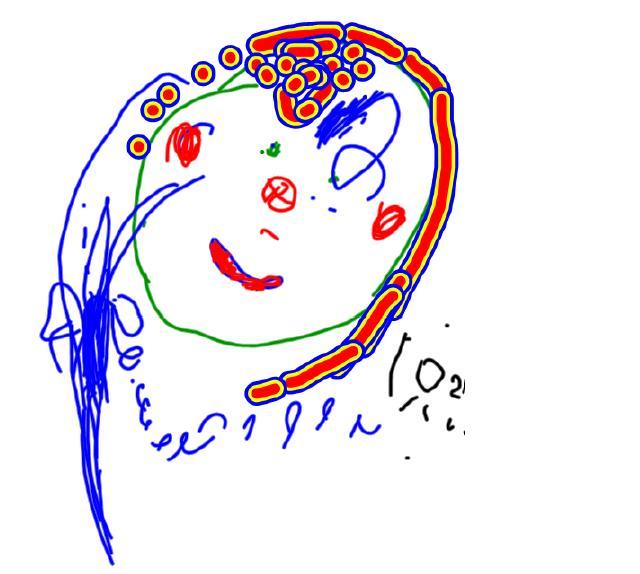 Kids Drawings from Nursery Pre-school