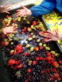 Fruit Squashing