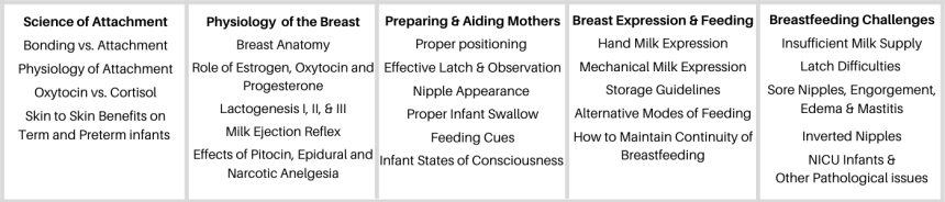 Birth & Beyond Lactation Training, Baby Friendly Lactation Training for Nurses or other healthcare provider
