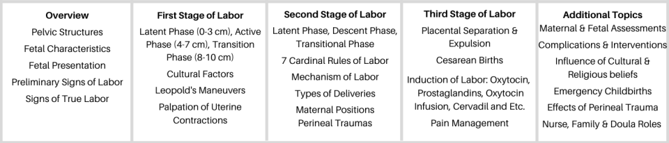 Fundamentals of Labor and Delivery Care