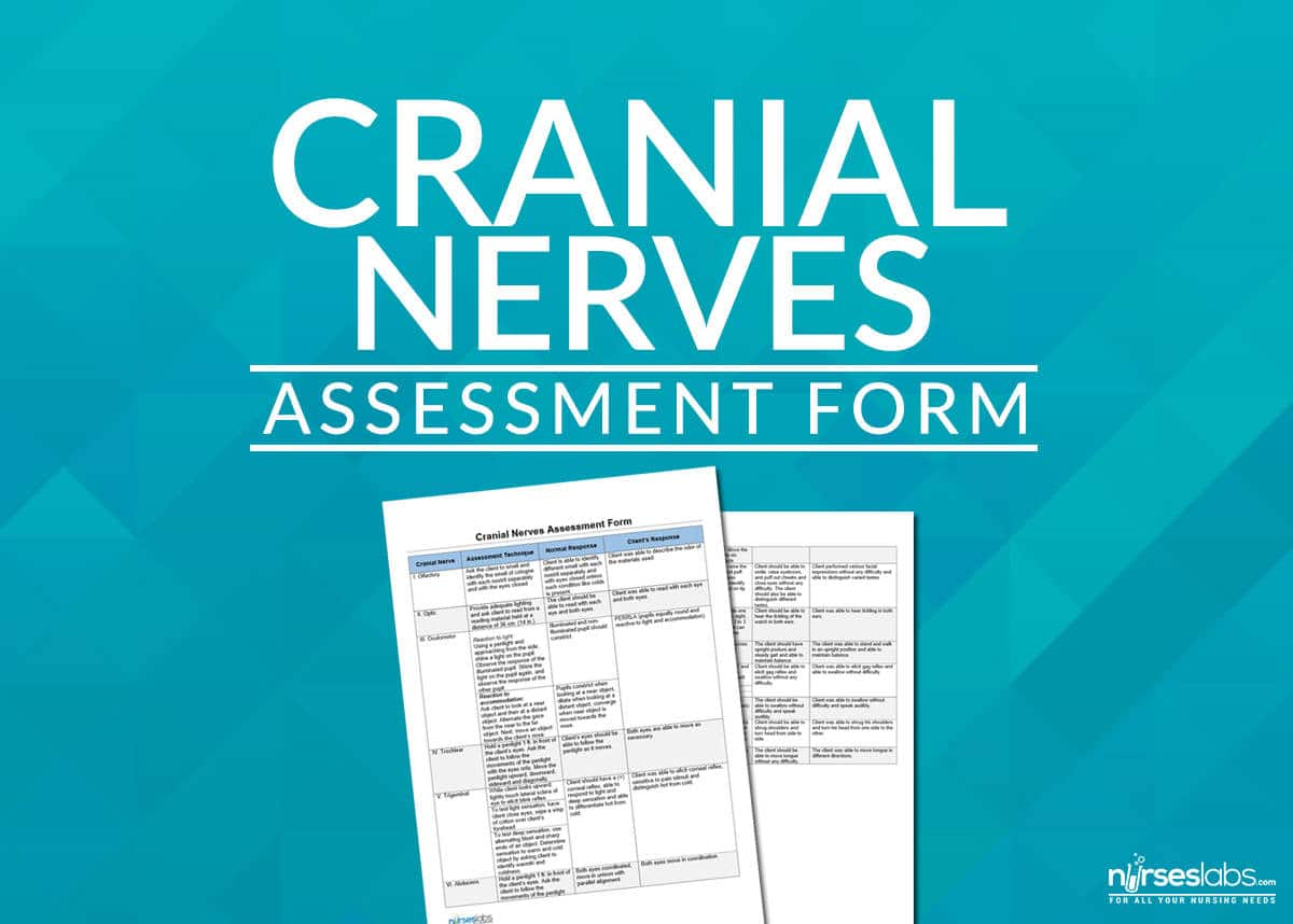 How To Assess Cranial Nerves Cranial Nerves Assessment Cheat Sheet