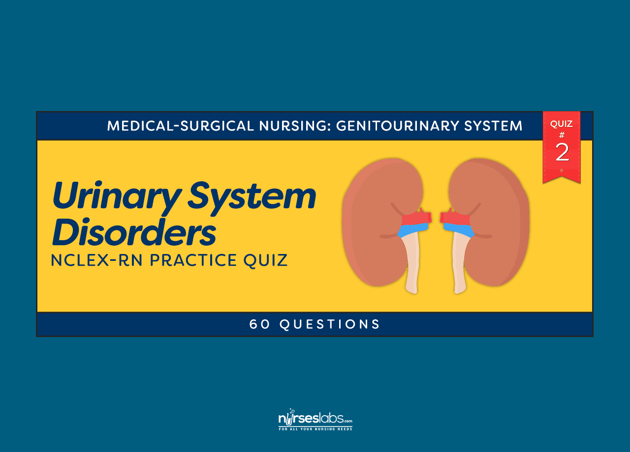 Urinary System Disorders Nclex Rn Practice Quiz 2 60 Questions