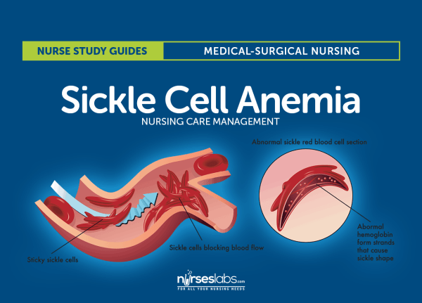 research page american sickle cell anemia association - HD 1280×920