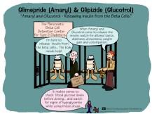 Amaryl and Glucotrol