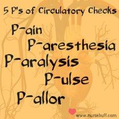 circulatory-checks-nursing-mnemonic