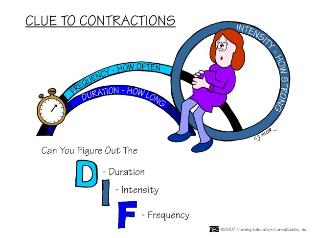 Clue To Contractions
