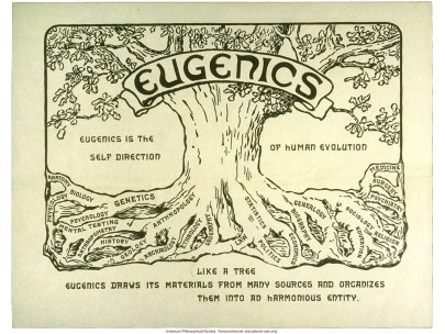 What's So Bad About Eugenics?