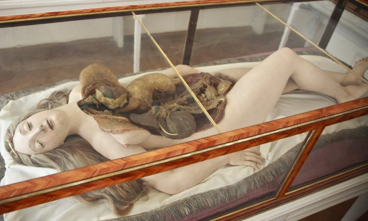 """An """"Anatomical Venus"""" model from the La Specola workshop, ca. 1784-1788. (Joanna Ebenstein/Collections and History of Medicine, MedUni, Vienna)"""