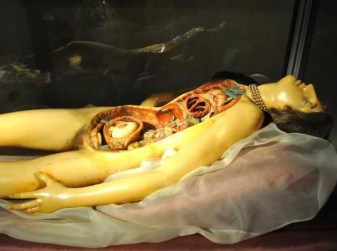 """Detail of Clemente Susini""""s """"Venerina"""" anatomical wax model, displayed in the Palazzo Poggi Museum, Bologna, Italy. (Lisa Rocaille/Flickr   CC BY-SA)"""