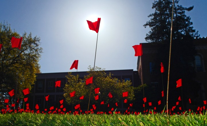 Flags representing each of the potential 3,000 women that will be assaulted on a campus the size of the University of Oregon, based on national averages and data supplied by the UO Women's Center. (Wolfram Burner/Flickr | CC BY-NC)