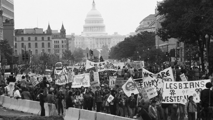 1979 photo of a massive crowd of protesters with the capitol in the background