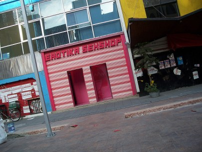"Photo of a pink store front with the words ""Erotica Sexshop"" across the top."