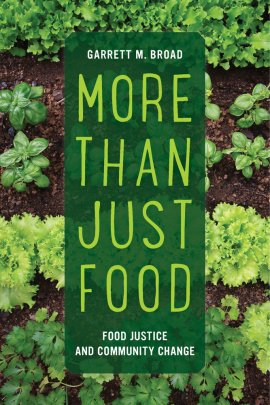 Book jacket cover for Garrett Broad's new book, More than Just Food. Shows an overhead shot of a row of lettuces growing.