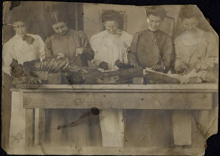 Five women in surgical gowns are lined up behind a wooden table on which is a cadaver they are dissecting.