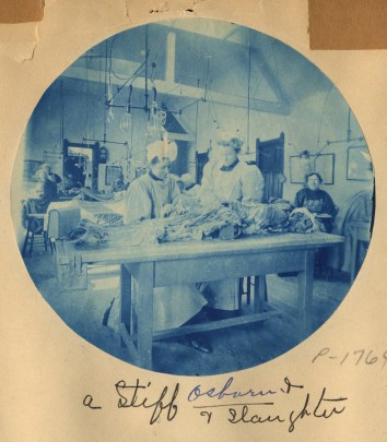 "Two women standing at a wooden table with a cadaver on it they are dissecting. Large electric lights hang above the table and there are other similar tables in the room. The photo caption reads: ""A stiff, Osborn, and Slaughter."""