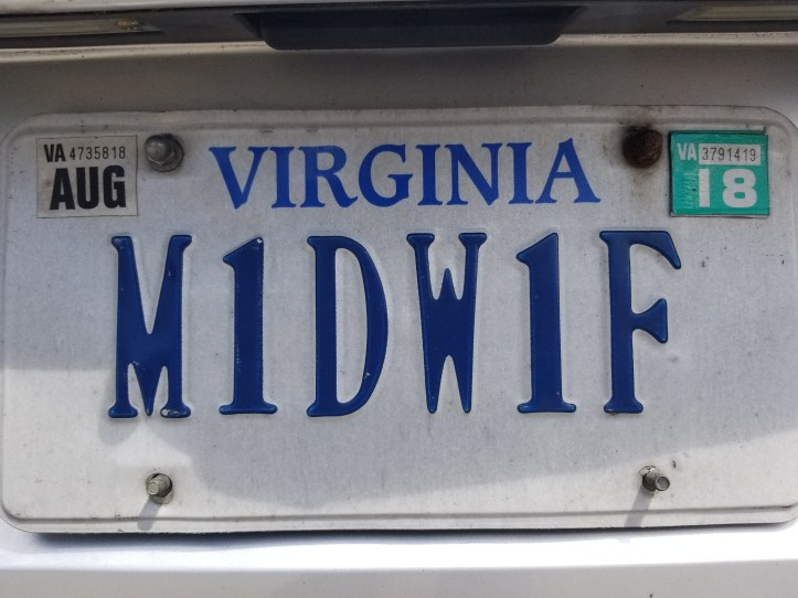 White license plate for Virginia, with M1DW1F spelled in blue letters.