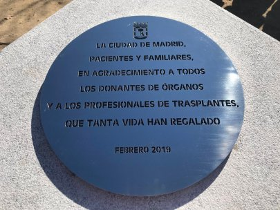 Heart Transplantation, Democracy, and Collective Forgetting in Contemporary Spain