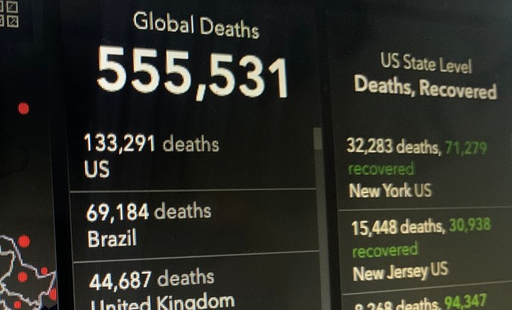A list of global COVID-19 deaths lists the United States with 133,291 deaths and Brazil with 69,184 deaths.