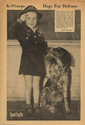 A little girl in uniform with big smile gives a salute and so does her spotted dog, who looks up at her.
