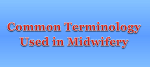 Common Terminology Used in Midwifery