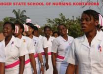 Niger state school of Nursing
