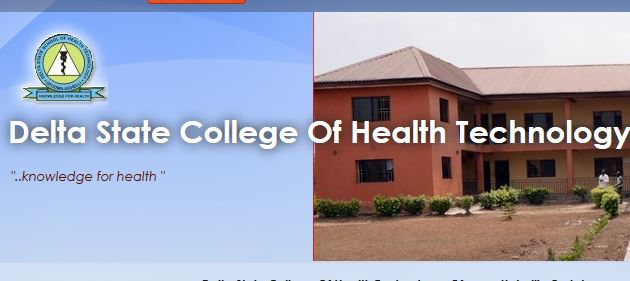 Delta state college of health technology