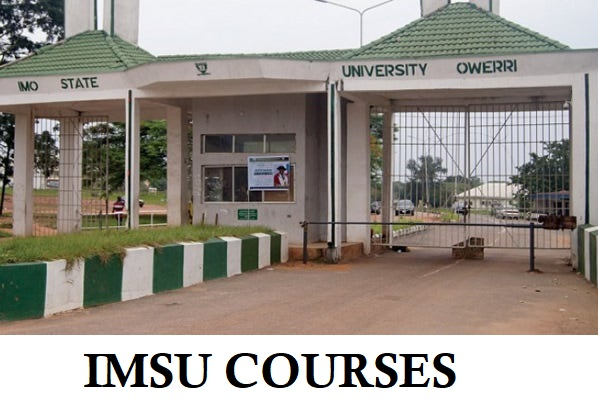 List of IAUE Courses and Entry Admission Requirements 1