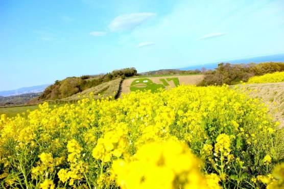 awaji island japan trip