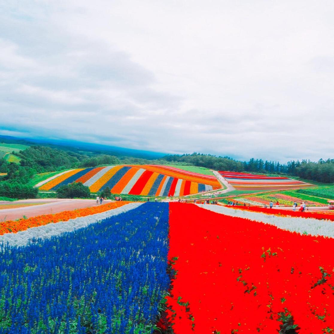 shikisai no oka flower lanes