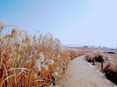 haneul-park-scenery