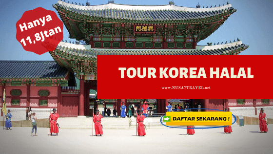 tour korea