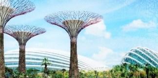 Bay South Garden Solar Trees/ Ilustrasi nusantaranews via earthtechling