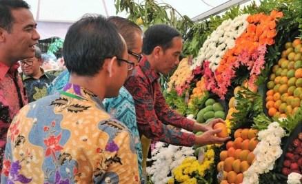 Presiden Jokowi menyaksikan buah lokal pada Festival Buah dan Bunga Nusantara, Bogor, Sabtu (28/11/2016) pagi/Foto: dok. Humas Setkab