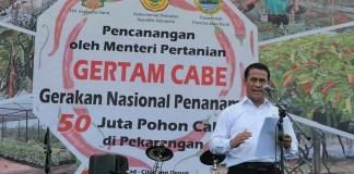 Menteri Pertanian RI, Andi Amran Sulaiman saat sambutan di acara Gerakan Tanam Cabai (Gertam) di Depok, Selasa (22/11/2016)/Foto Andika / NUSANTARAnews