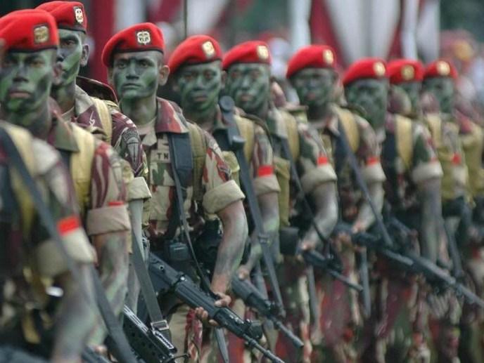 Barisan TNI. Foto Ilustras/IST